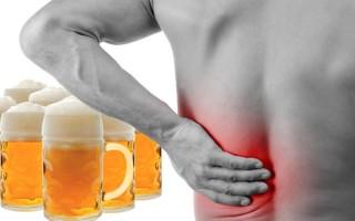 Могут ли болеть почки от алкоголя (пива)