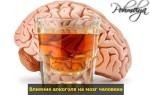Восстановление мозга и нервной системы после алкоголя