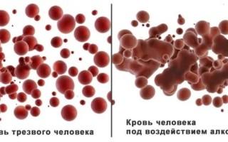Влияние алкоголя на свойства крови