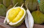 Дуриан – король экзотических фруктов!