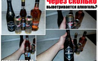 Через сколько выветривается алкоголь (пиво, водка, вино)? Разберем различные организмы по таблицам