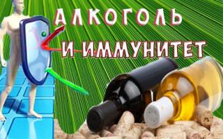 Снижает или нет алкоголь иммунитет?