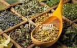Травы от алкоголизма: лучшие рецепты