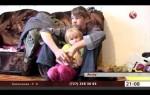 Родители алкоголики и их дети фото