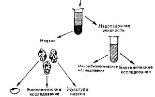 Влияние курения на молекулу ДНК (наследственность). Мутагены табачного дыма